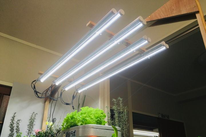 栽培用LEDの販売